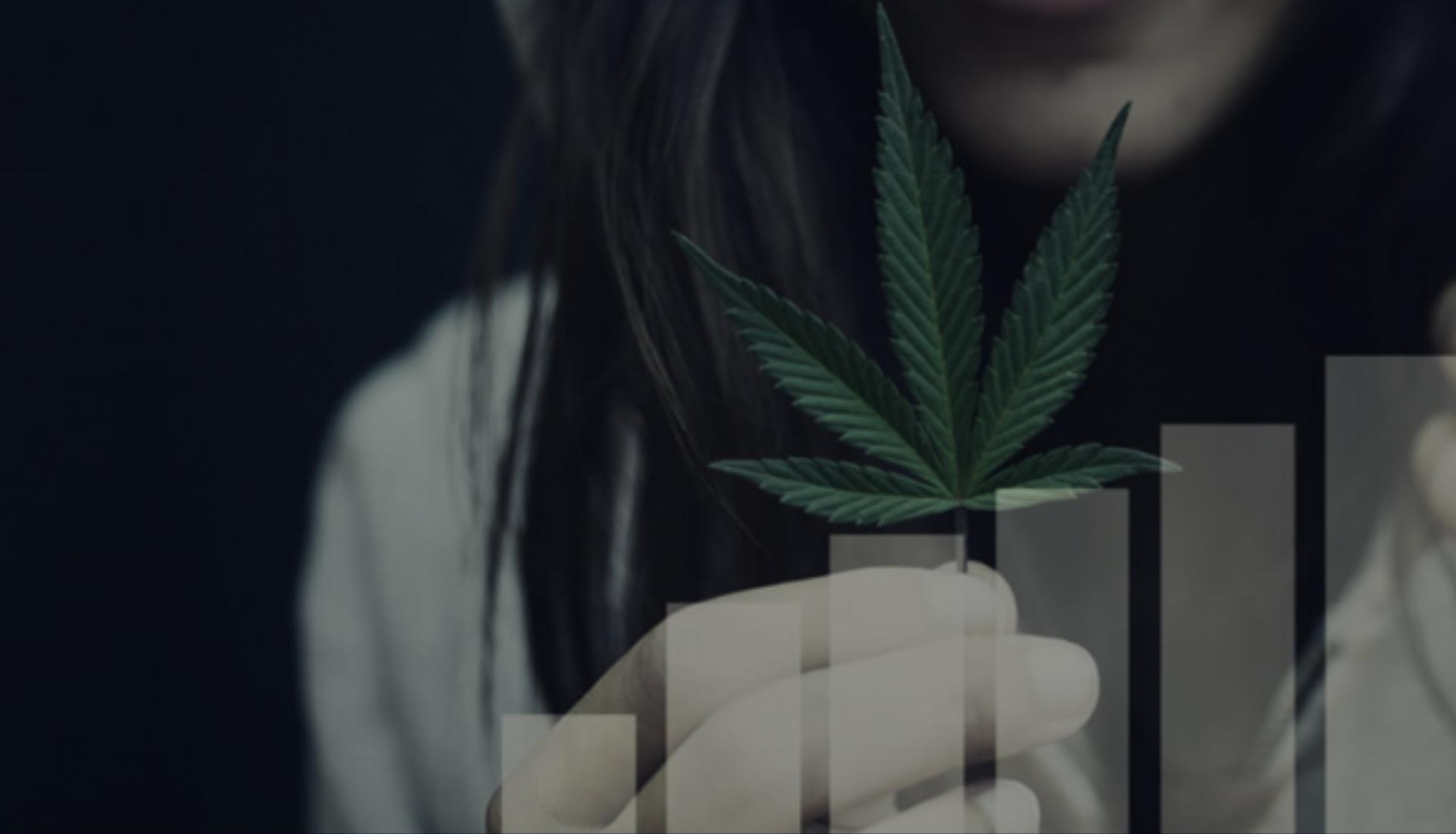 cannabis business growth chart, leaf, woman